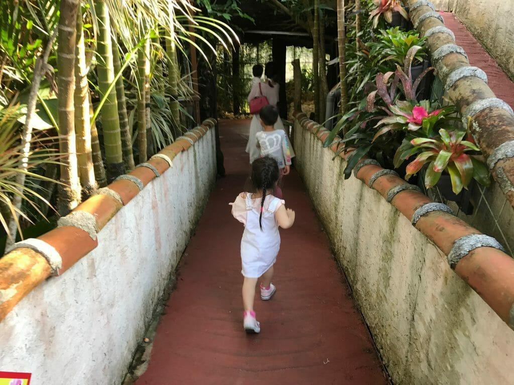 パイナップルパークは徒歩で!